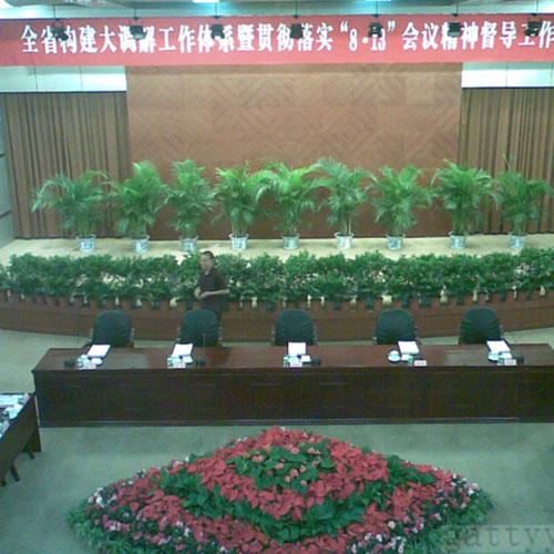 全省大调解会议植物租赁布置