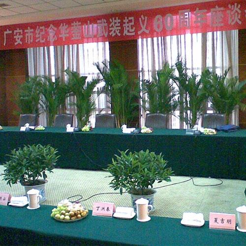 广安市纪念华蓥山武装起义60周年会场布置