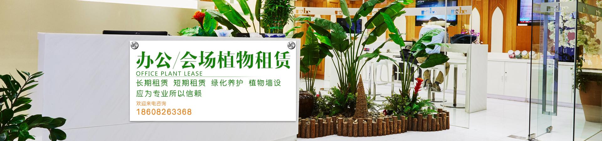 广安植物租摆